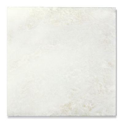 "Bianco Montcarte 16"" x 16"" field"
