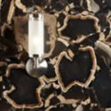 """24"""" x 48"""" log field in polished porto with KALLISTA Michael S Smith For Loft sconce"""