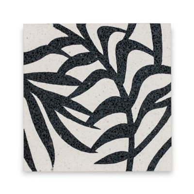 Palm Field in Bianco and Nero