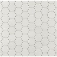 "2"" hexagon mosaic in honed finish"