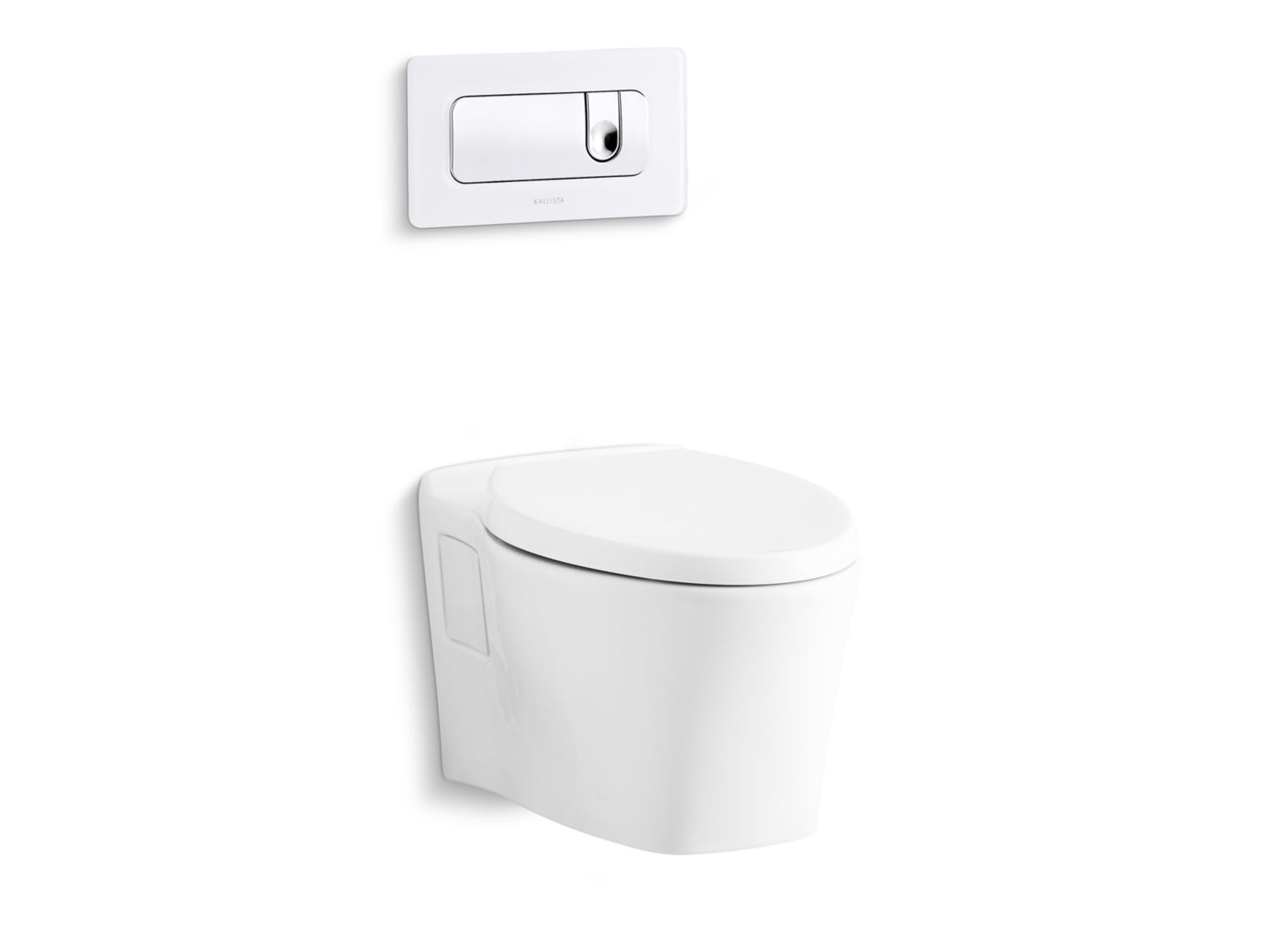 Pléo Wall-Mount Dual Flush Toilet, Less Seat and Flush Actuator ...