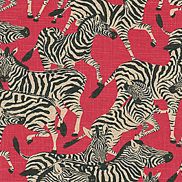 Black, White & Red Zebra Fabric | Zoo-la-la Ruby