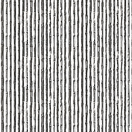 Black & White Bamboo Fabric | Bamboo Shoots Black
