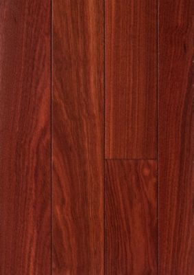 3 4 x 2 1 4 brazilian koa bellawood lumber liquidators for Bellawood hardwood floors