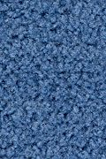 Mohawk Salsa - Agua Carpet