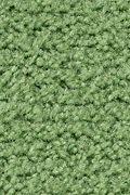 Mohawk Salsa - Jalapeno Carpet