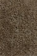 Mohawk Salsa - Honeywood Carpet