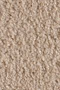 Mohawk Salsa - Bandit Carpet