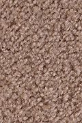 Mohawk Salsa - Chaps Carpet