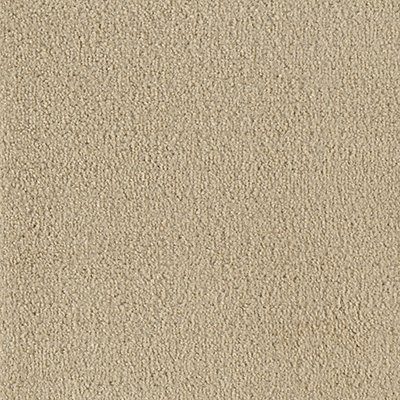 Salsa in Bandolier - Carpet by Mohawk Flooring