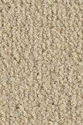 Mohawk Salsa - Bandolier Carpet