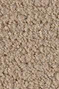 Mohawk Salsa - Sombrero Carpet