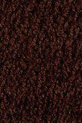 Mohawk Salsa - Mole Sauce Carpet