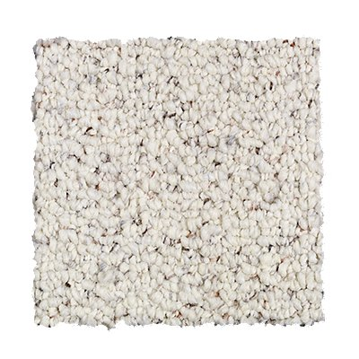 ProductVariant swatch small for Snowy Alps flooring product