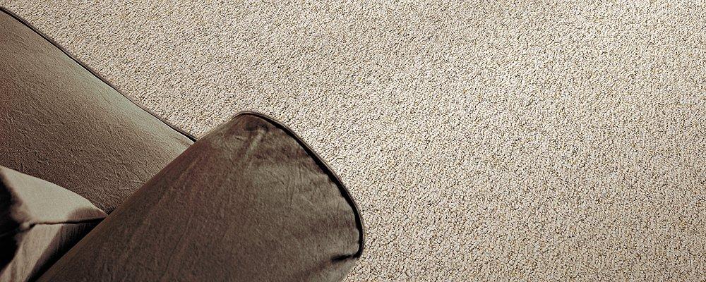 Room Scene of Andora Falls - Carpet by Mohawk Flooring