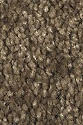 Mohawk Smart Color - Sassafras Carpet