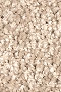 Mohawk Smart Color - Jute Carpet