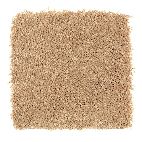 Smart Color in Muslin - Carpet by Mohawk Flooring