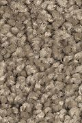 Mohawk Smart Color - Dry Twig Carpet