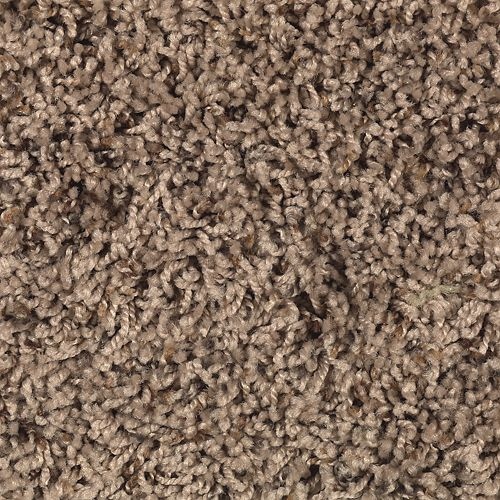 Denali Bluffs Spice Brown 107