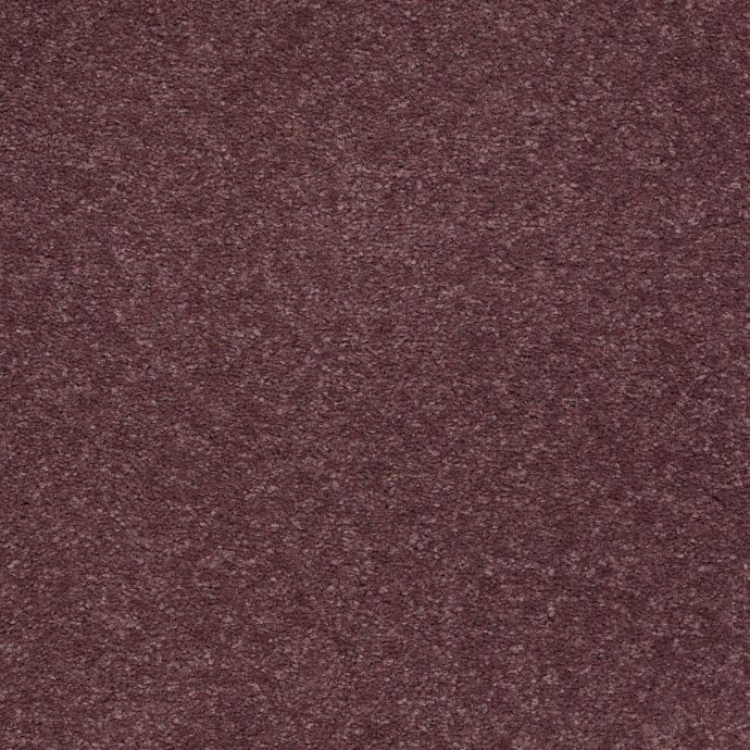 Harmonic Hue Plum Grape 474