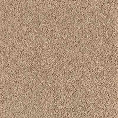 ProductVariant swatch small for Praline flooring product