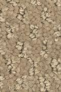 Mohawk Rare Wonder - Pearlwood Carpet