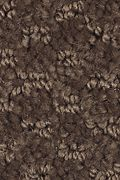 Mohawk Rare Wonder - Walnut Carpet