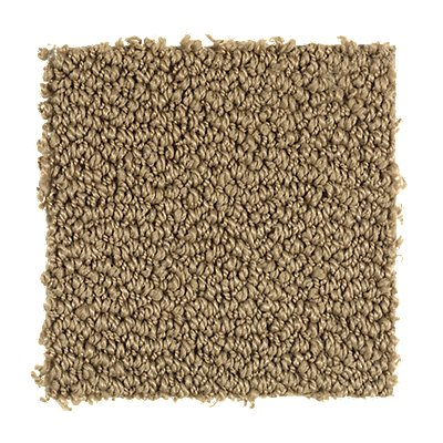Trustworthy in Laredo - Carpet by Mohawk Flooring