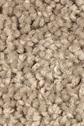 Mohawk Famous Fair - Sagebrush 12FT Carpet