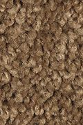 Mohawk Famous Fair - Spice Tone 12FT Carpet
