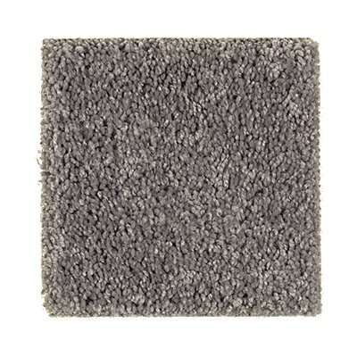 Living Legacy in Graphite - Carpet by Mohawk Flooring