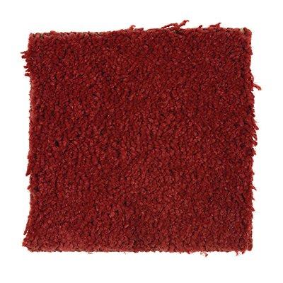 Brookfield Heights in Big Apple - Carpet by Mohawk Flooring