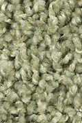 Mohawk Perfect Mix - Sweet Basil Carpet