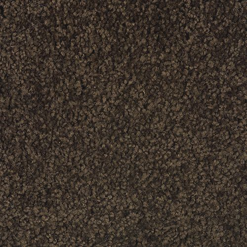 Coastal Path III Black Walnut 504