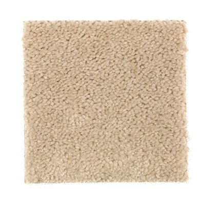 ProductVariant swatch small for Blanched Almonds flooring product