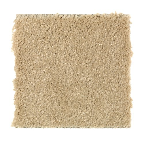 Ideal Home in Sunshine - Carpet by Mohawk Flooring