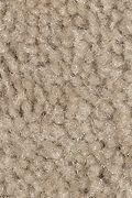 Mohawk Solo - Nutria Carpet