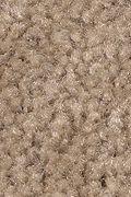Mohawk Solo - Country Path Carpet