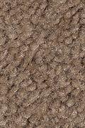 Mohawk Solo - Wooden Beam Carpet