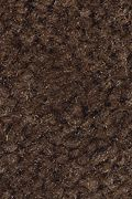 Mohawk Solo - Dark Roast Carpet