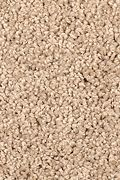 Mohawk Pleasant Dreams - Rustic Tan Carpet