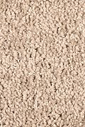 Mohawk Skillful Intent - Jute Carpet