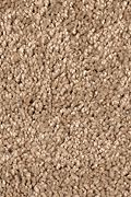 Mohawk Pleasant Dreams - Brush Meadow Carpet