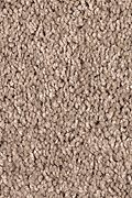 Mohawk Pleasant Dreams - Champagne Beige Carpet