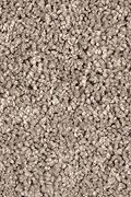 Mohawk Pleasant Dreams - Pumice Stone Carpet