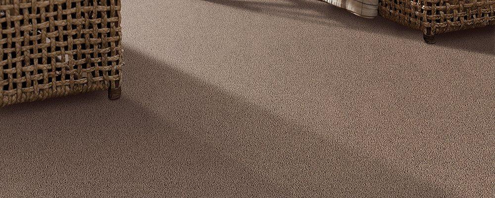 Room Scene of Exclusive Beauty - Carpet by Mohawk Flooring