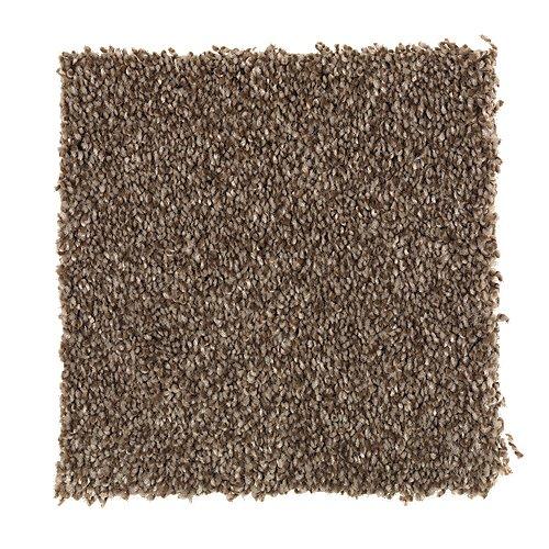 Forever Famous in Mesquite - Carpet by Mohawk Flooring