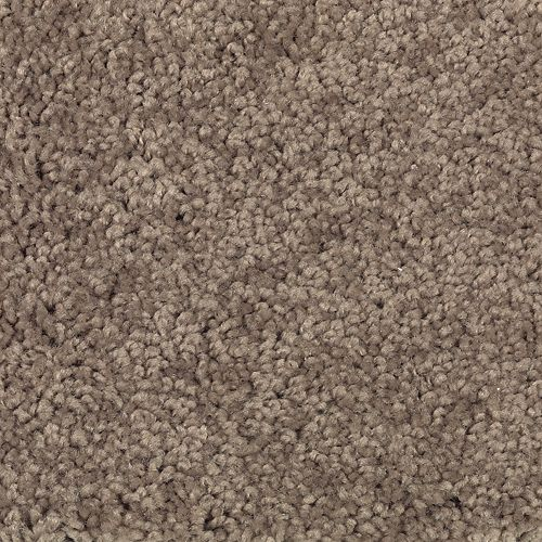 Talk Of The Town Taupe Tone 878