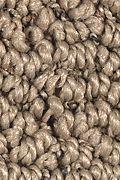 Mohawk Advanced Elements - Cypress Carpet